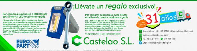 31 Aniversario de Castelao