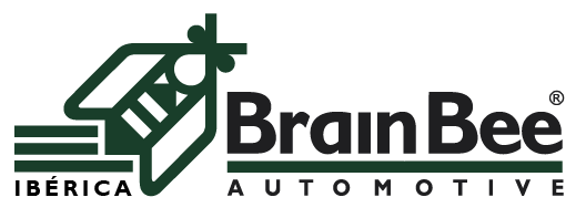 Connex de Brain Bee Iberica