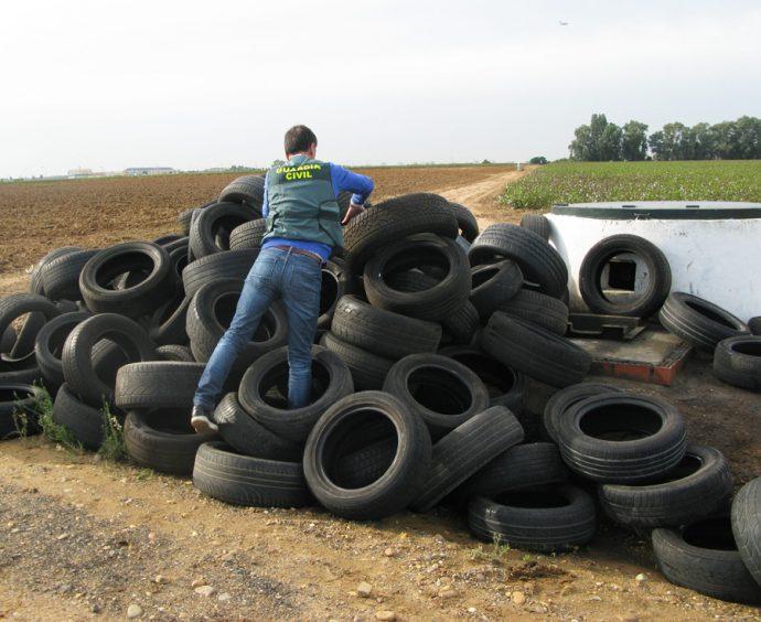 CAPA recogida de vertido incontrolado de neumáticos