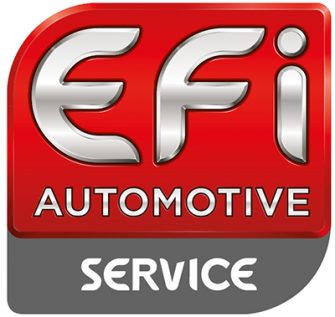 efi automotive service