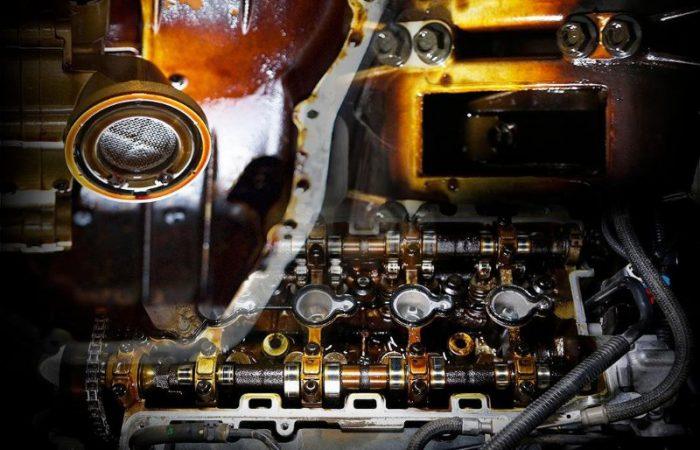 informacion sobre fangos del motor 700x450