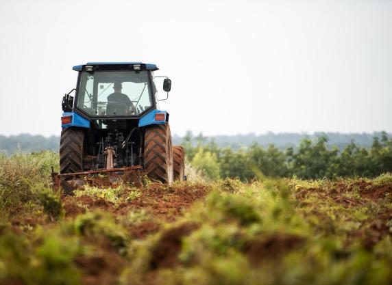 Uup estudio presencia digital concesionarios maquinaria agrícola